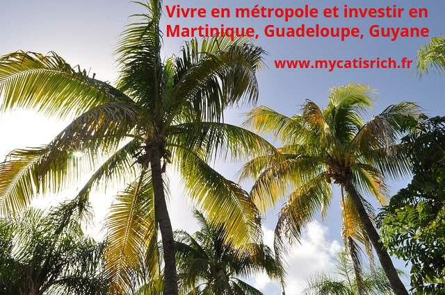 vivre-métrople-investir-antilles
